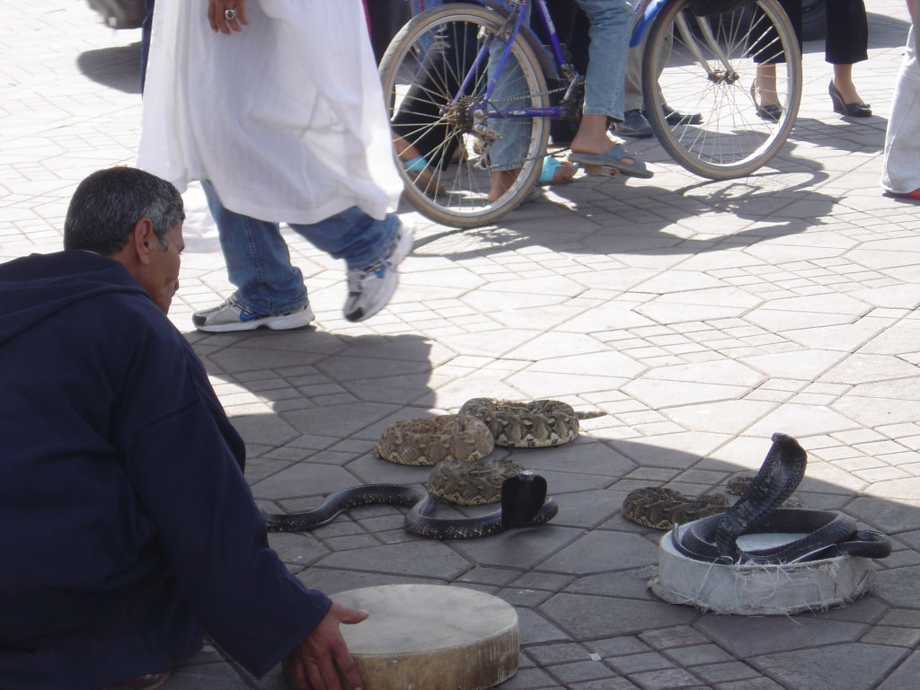 marrakesh marzo 2008-2 233